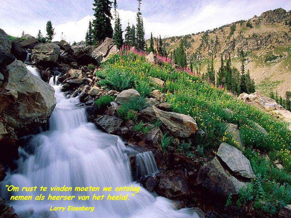 Alleen in helder water zie je diepte… Rutger Kopland