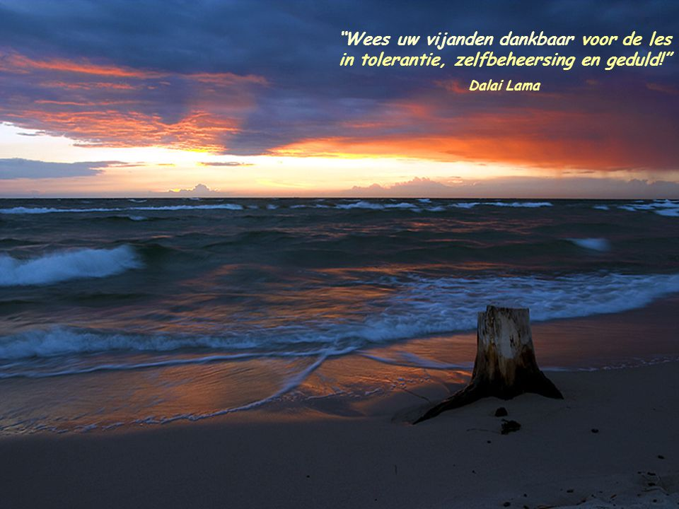 Wees uw vijanden dankbaar voor de les in tolerantie, zelfbeheersing en geduld! Dalai Lama