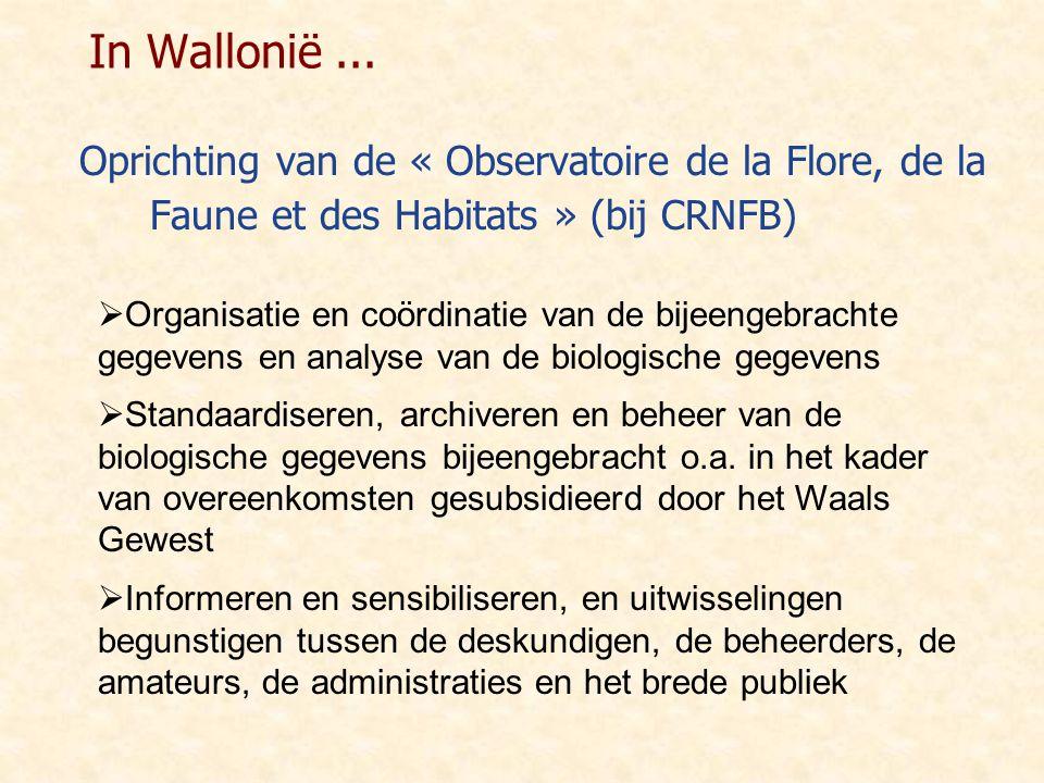 In Wallonië... Oprichting van de « Observatoire de la Flore, de la Faune et des Habitats » (bij CRNFB)  Organisatie en coördinatie van de bijeengebra