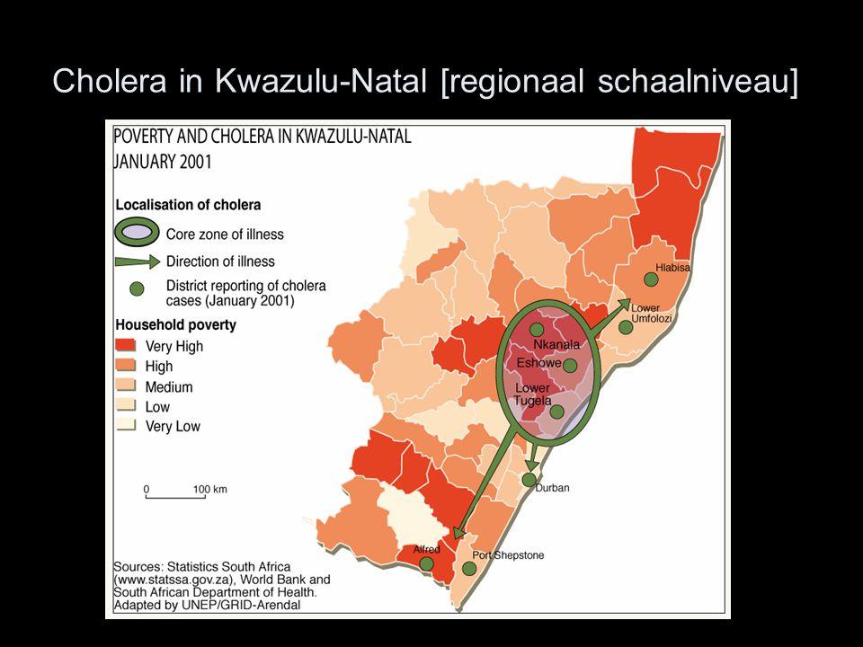 Cholera in Kwazulu-Natal [regionaal schaalniveau]