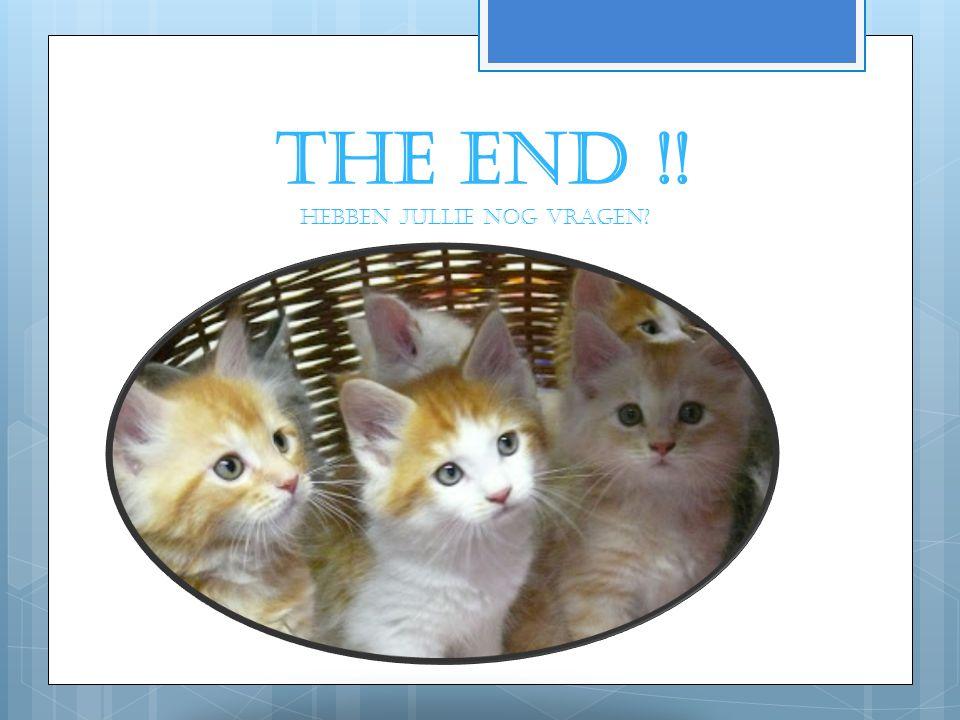 THE END !! Hebben jullie nog vragen?
