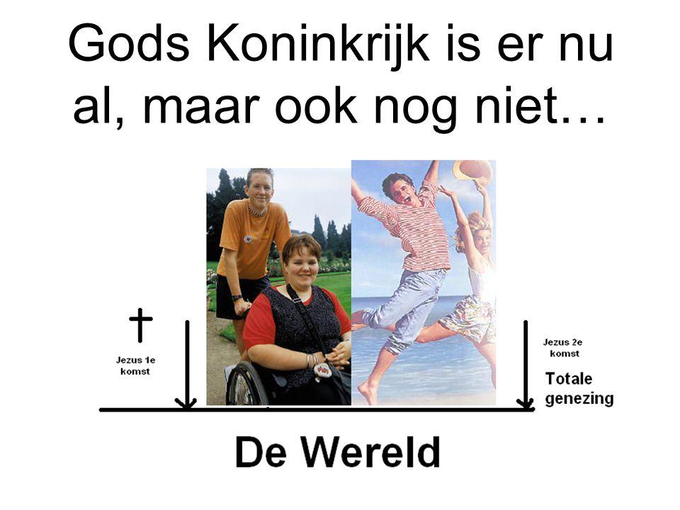 Janneke Vlot genezen door de kracht van God 17 jaar ziek op bed.