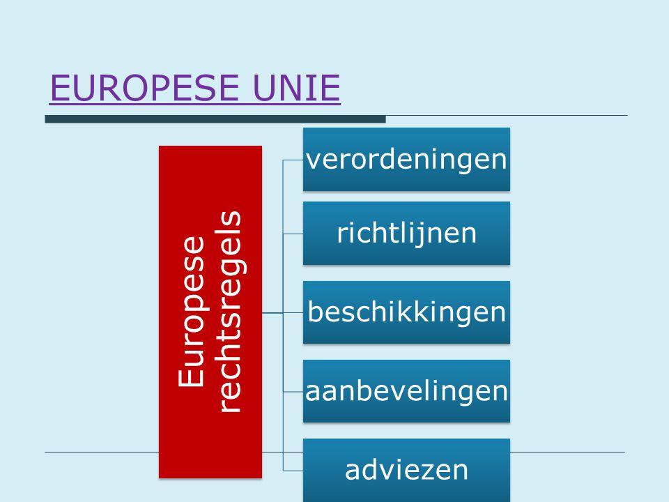 Europese rechtsregels verordeningen richtlijnen beschikkingen aanbevelingen adviezen