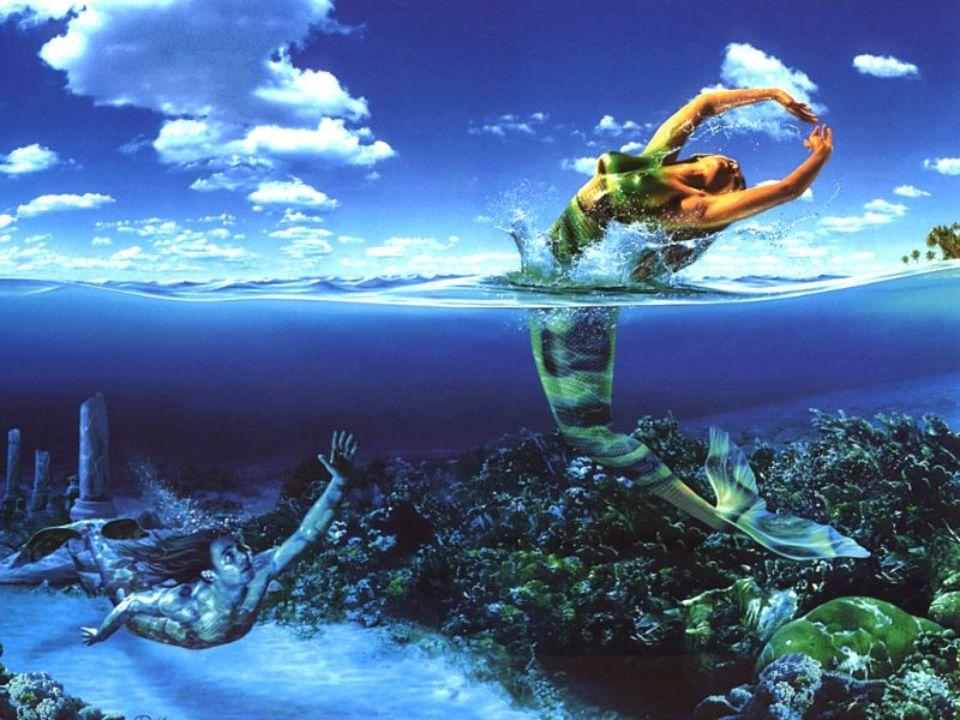 Waterman 21 jan-19 feb Jij hebt hele kleurrijke vriend(inn)en, maar je bent zelf ook ontzettend origineel. Dat is te zien aan je kleding en aan je man