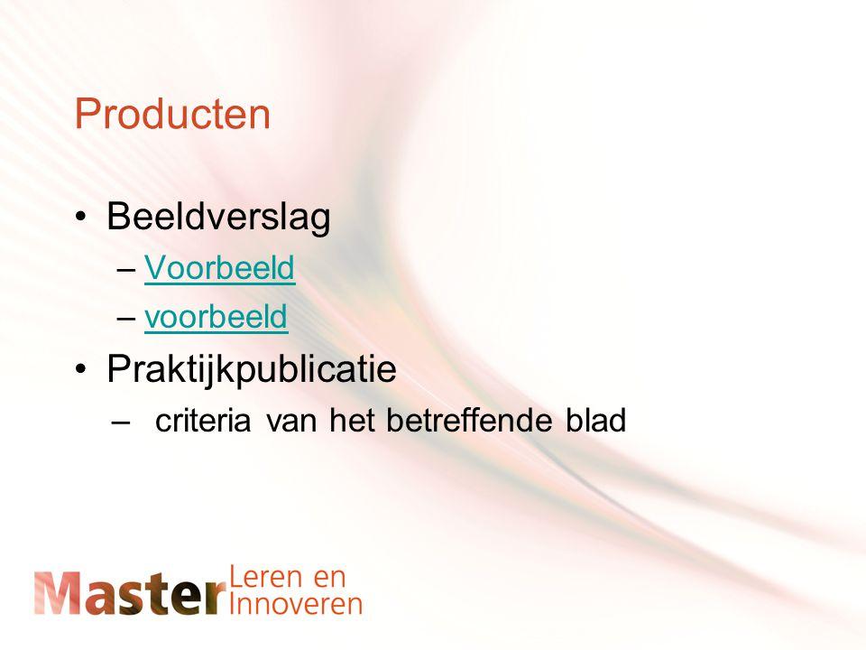 Producten Beeldverslag –VoorbeeldVoorbeeld –voorbeeldvoorbeeld Praktijkpublicatie –criteria van het betreffende blad