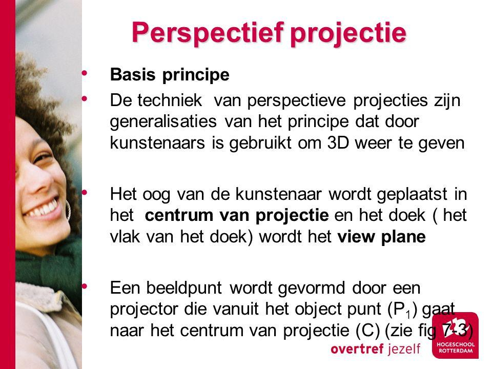 Perspectief projectie Basis principe De techniek van perspectieve projecties zijn generalisaties van het principe dat door kunstenaars is gebruikt om