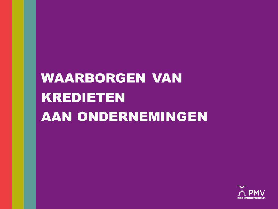 29 MEZZANINEFINANCIERING MEZZANINE PARTNERS 1 Mezzanine Partners 1 (MP1), een gezamenlijk initiatief van PMV en de private investeringsmaatschappij Capital@rent, is het eerste mezzzaninefonds in België; Het fonds verstrekt: mezzanineleningen op maat; aan grotere bedrijven met een bewezen track record; voor een bedrag tussen 2,5 en 10 miljoen euro; aan marktconforme voorwaarden.