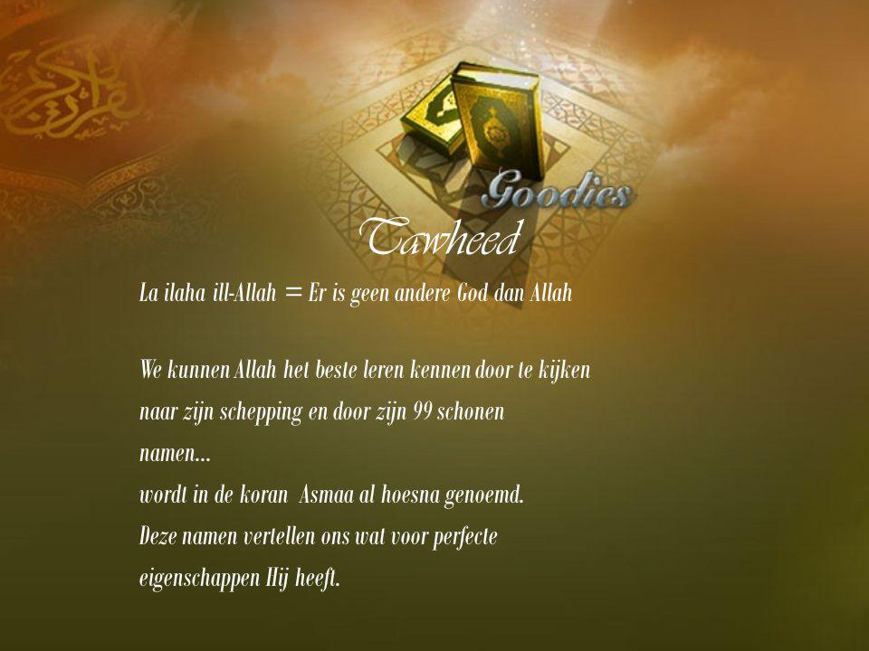 Tawheed La ilaha ill-Allah = Er is geen andere God dan Allah We kunnen Allah het beste leren kennen door te kijken naar zijn schepping en door zijn 99