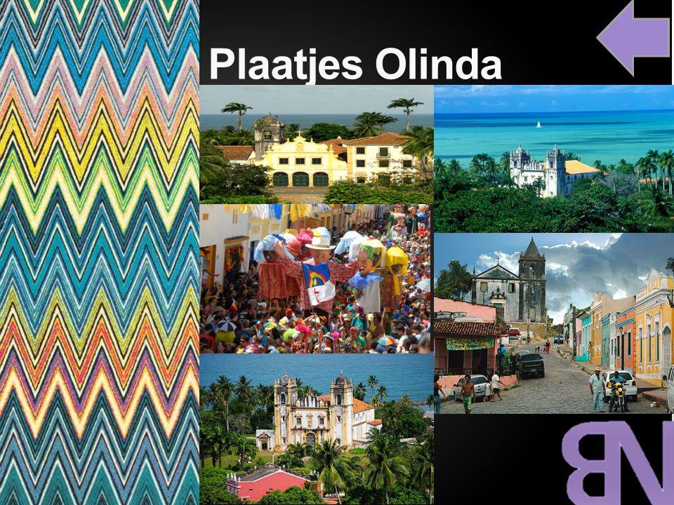 Plaatjes Olinda cc