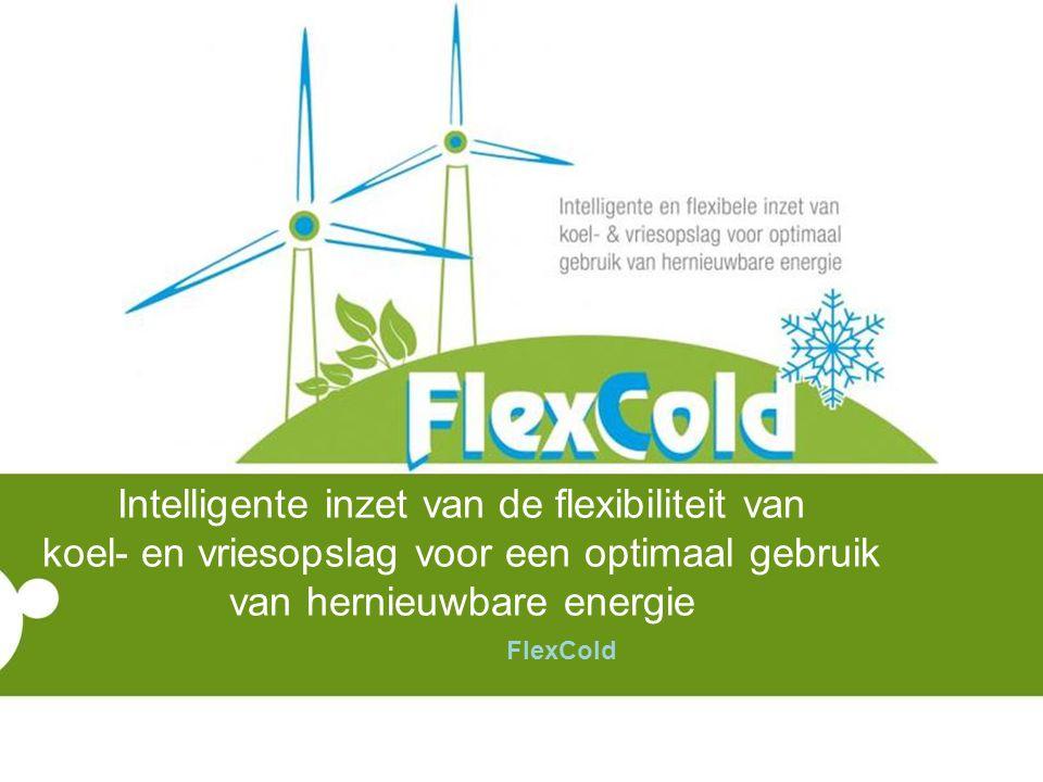 Intelligente inzet van de flexibiliteit van koel- en vriesopslag voor een optimaal gebruik van hernieuwbare energie FlexCold