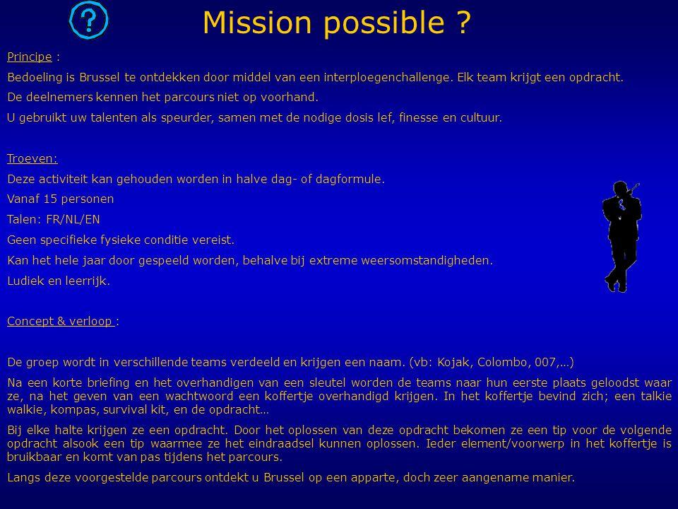 Principe : Bedoeling is Brussel te ontdekken door middel van een interploegenchallenge. Elk team krijgt een opdracht. De deelnemers kennen het parcour
