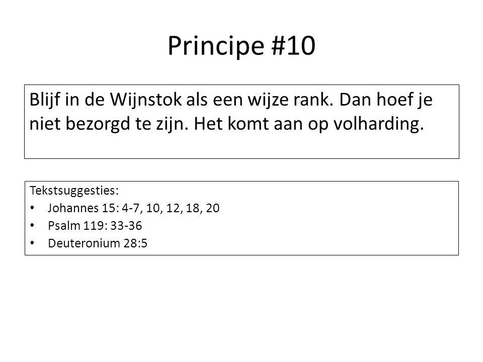 Principe #10 Blijf in de Wijnstok als een wijze rank. Dan hoef je niet bezorgd te zijn. Het komt aan op volharding. Tekstsuggesties: Johannes 15: 4-7,