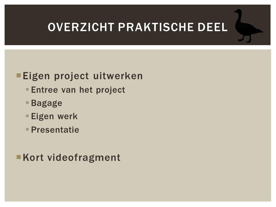  Eigen project uitwerken  Entree van het project  Bagage  Eigen werk  Presentatie  Kort videofragment OVERZICHT PRAKTISCHE DEEL
