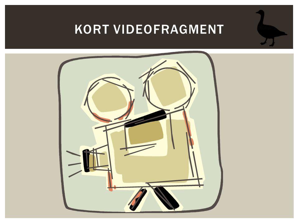 KORT VIDEOFRAGMENT