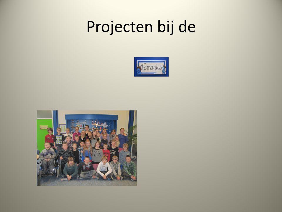 Projecten bij de