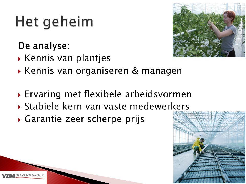 De analyse:  Kennis van plantjes  Kennis van organiseren & managen  Ervaring met flexibele arbeidsvormen  Stabiele kern van vaste medewerkers  Ga