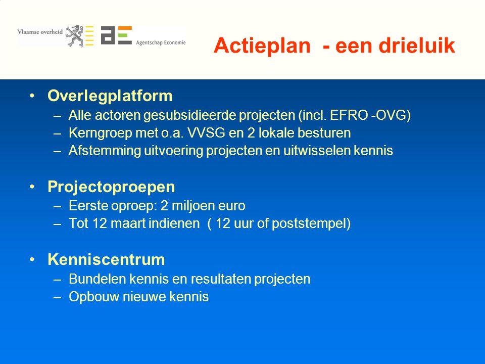 Actieplan - een drieluik Overlegplatform –Alle actoren gesubsidieerde projecten (incl.