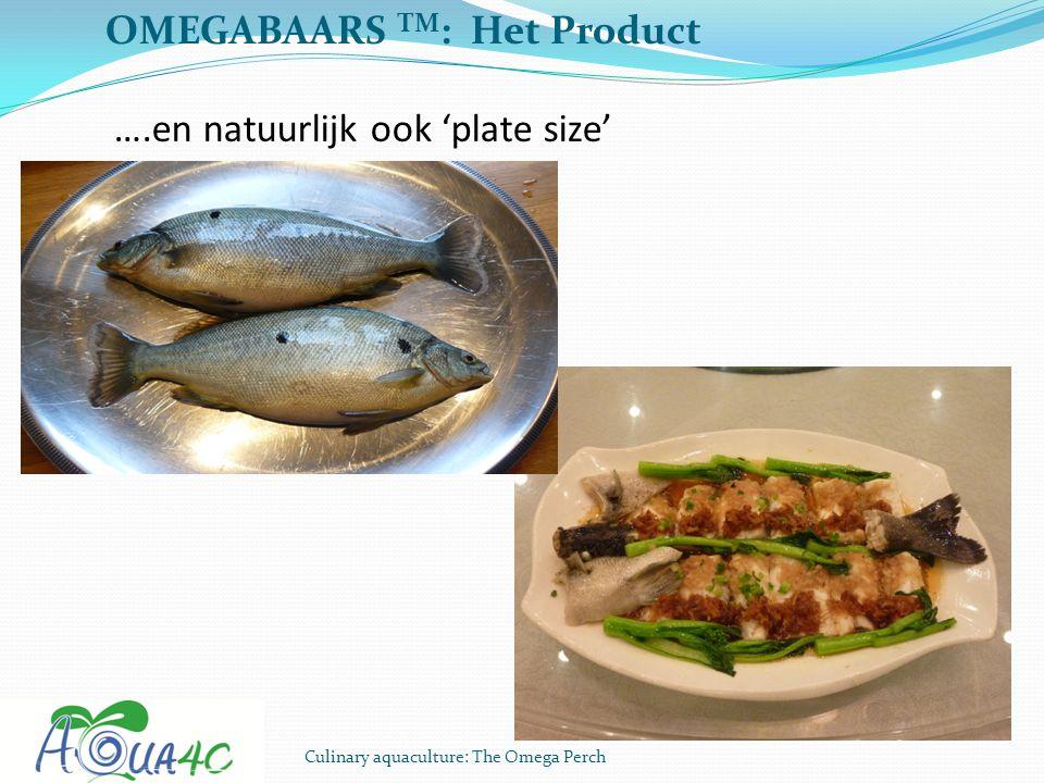 Culinary aquaculture: The Omega Perch OMEGABAARS TM : Het Product ….en natuurlijk ook 'plate size'