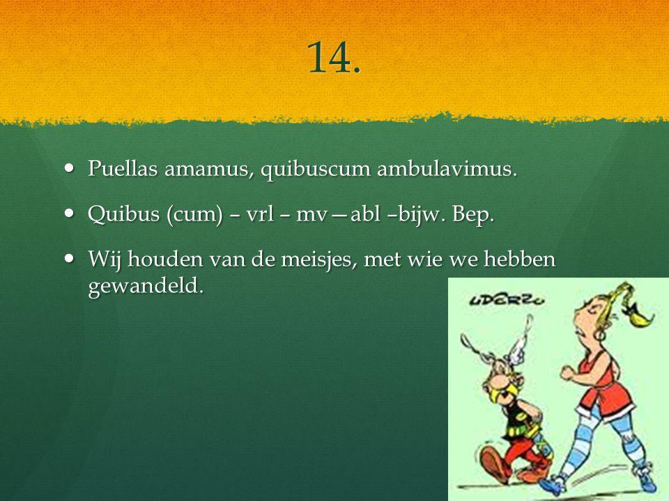 14. Puellas amamus, quibuscum ambulavimus. Puellas amamus, quibuscum ambulavimus.