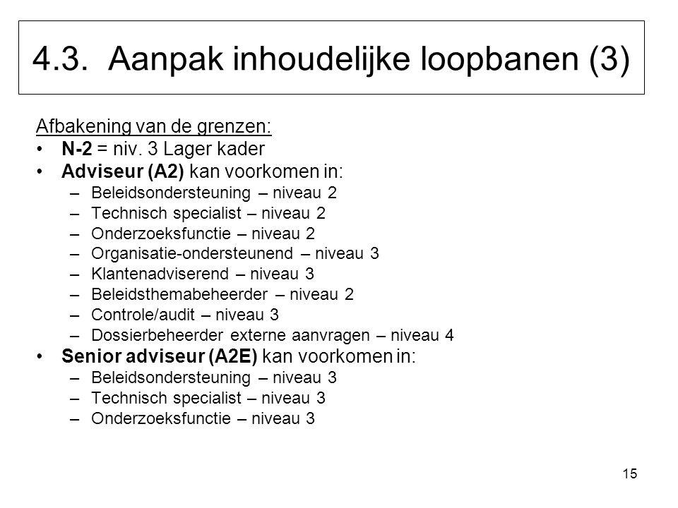 15 Afbakening van de grenzen: N-2 = niv. 3 Lager kader Adviseur (A2) kan voorkomen in: –Beleidsondersteuning – niveau 2 –Technisch specialist – niveau