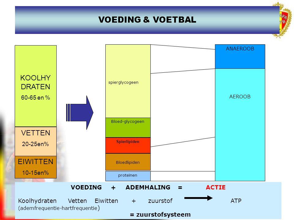 VOEDING & VOETBAL VOEDING + ADEMHALING = ACTIE Koolhydraten Vetten Eiwitten + zuurstof ATP (ademfrequentie-hartfrequentie ) = zuurstofsysteem spiergly