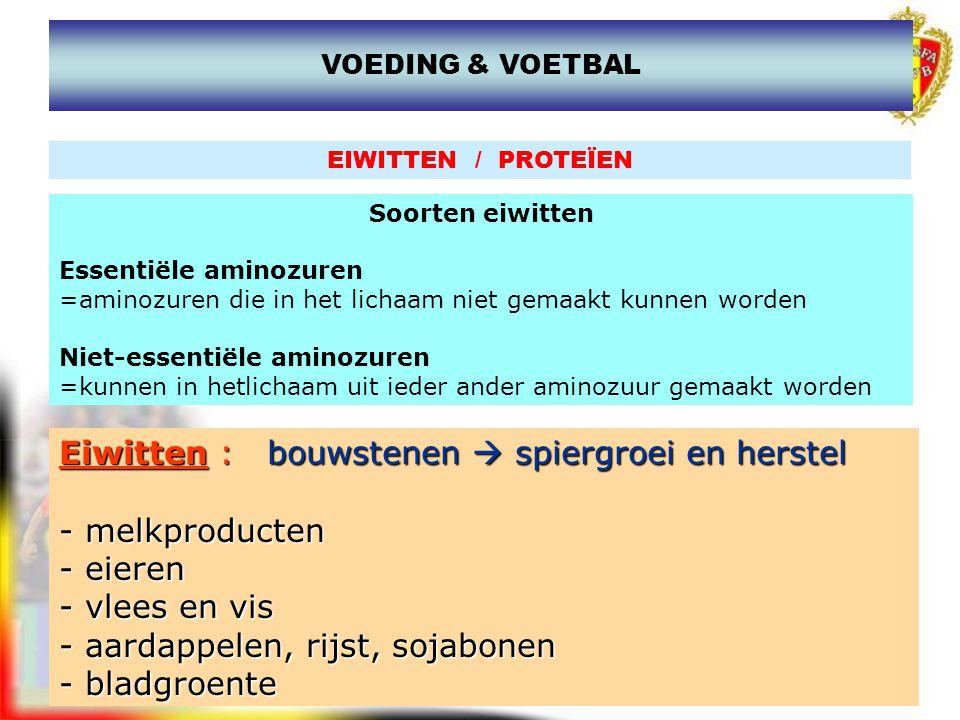 www.joostdesender.be Eiwitten : bouwstenen  spiergroei en herstel - melkproducten - eieren - vlees en vis - aardappelen, rijst, sojabonen - bladgroen