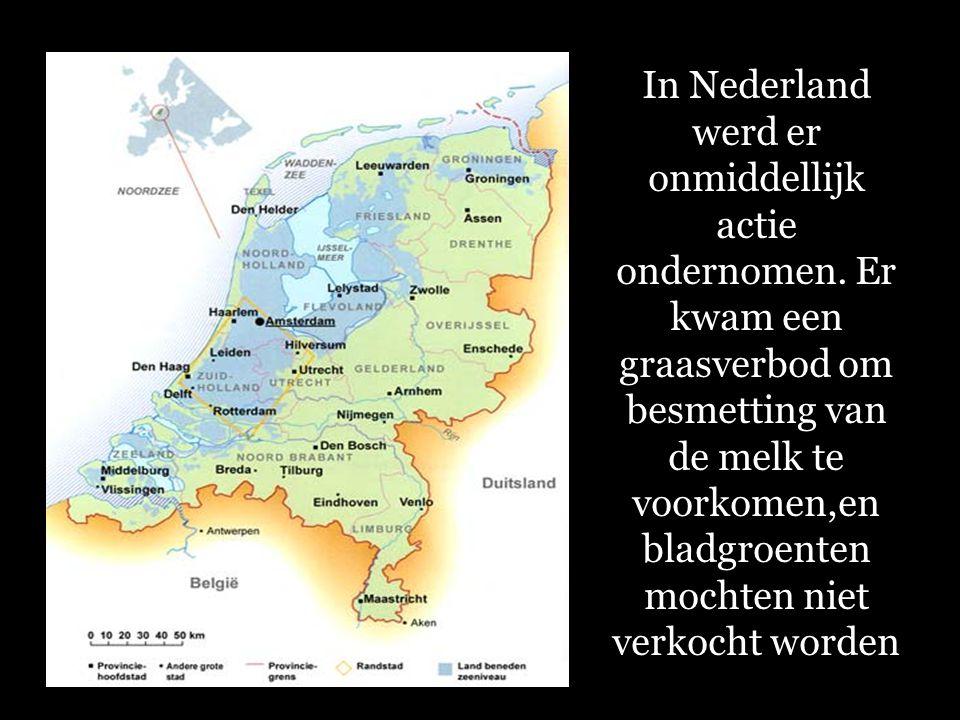 In Nederland werd er onmiddellijk actie ondernomen.