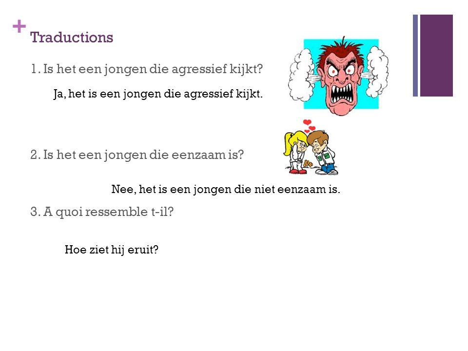 + Traductions 1. Is het een jongen die agressief kijkt? 2. Is het een jongen die eenzaam is? 3. A quoi ressemble t-il? Ja, het is een jongen die agres