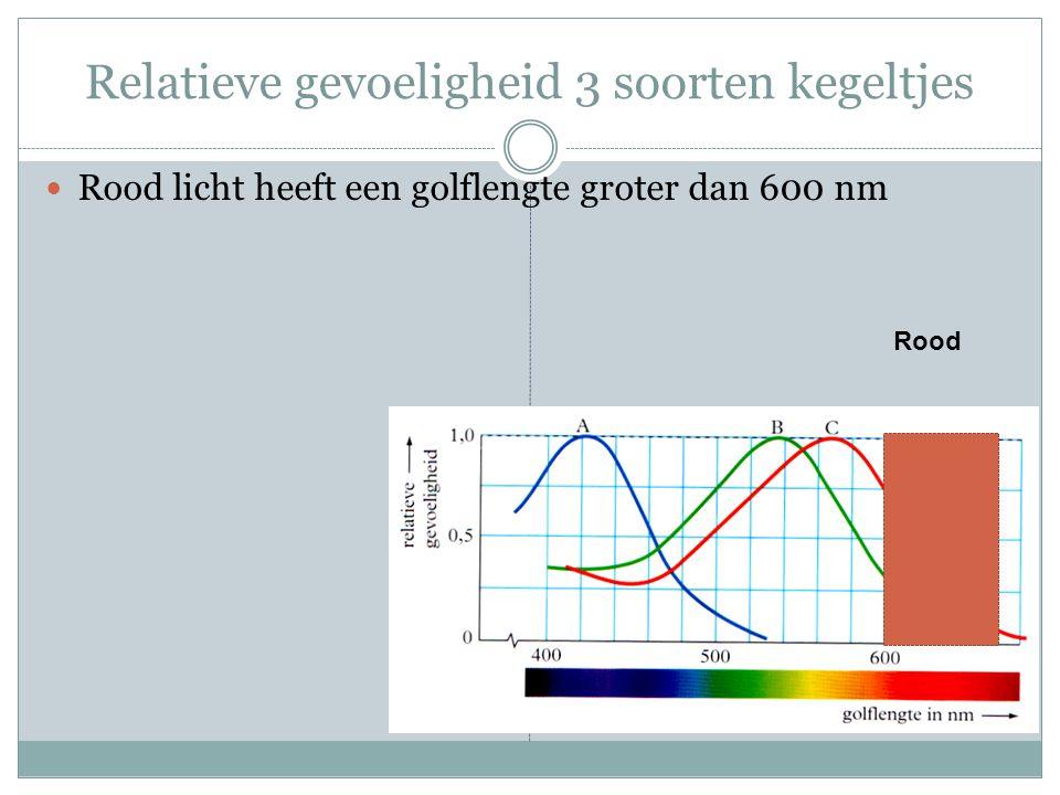 Relatieve gevoeligheid 3 soorten kegeltjes Rood licht heeft een golflengte groter dan 600 nm Rood