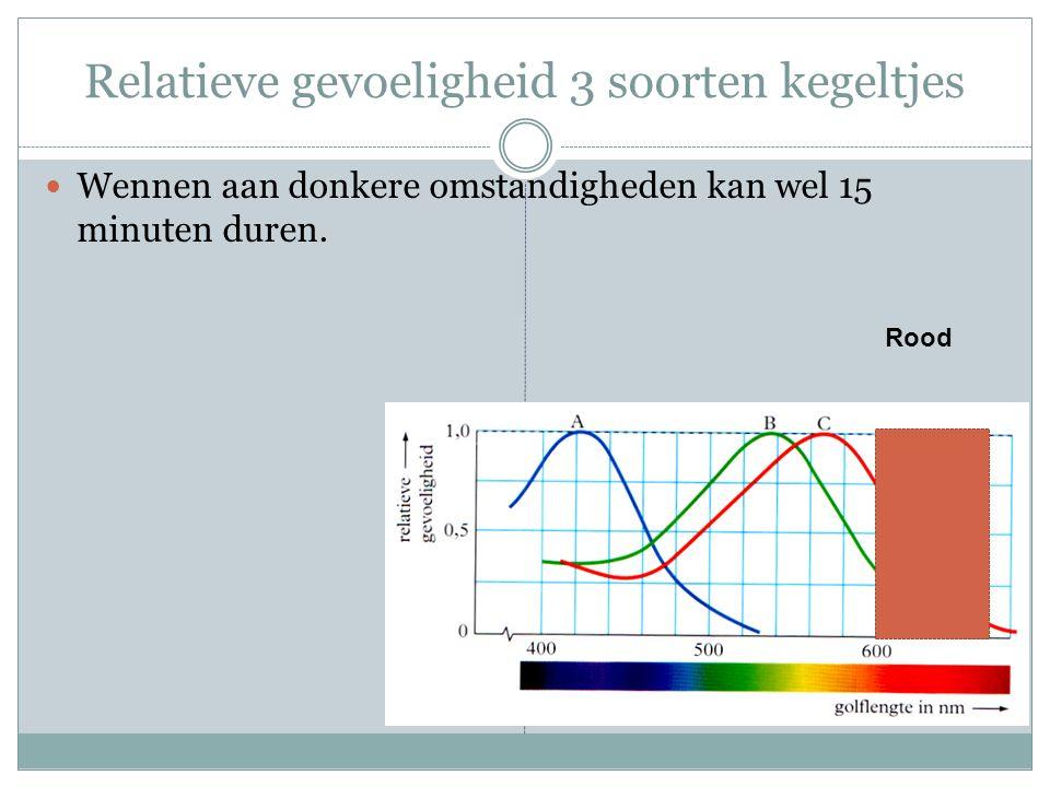 Relatieve gevoeligheid 3 soorten kegeltjes Wennen aan donkere omstandigheden kan wel 15 minuten duren. Rood