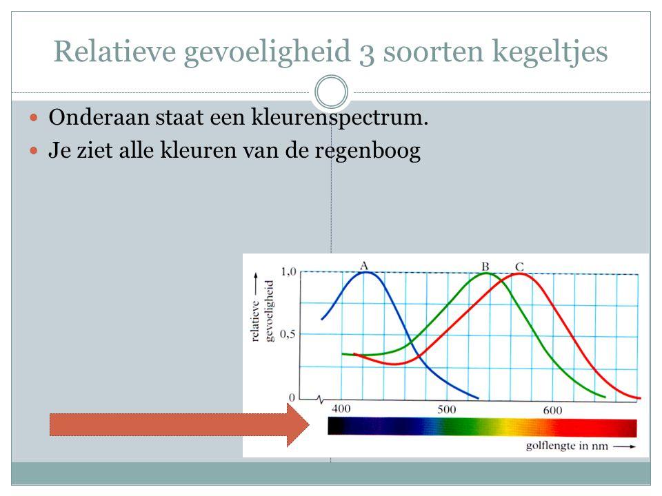 Relatieve gevoeligheid 3 soorten kegeltjes Onderaan staat een kleurenspectrum. Je ziet alle kleuren van de regenboog