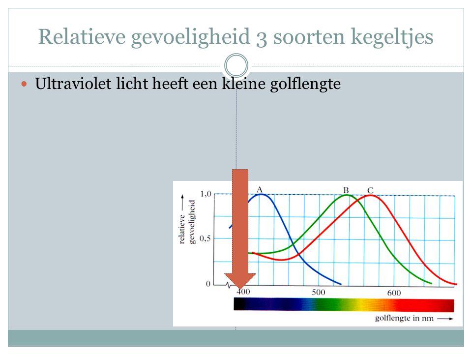 Relatieve gevoeligheid 3 soorten kegeltjes Ultraviolet licht heeft een kleine golflengte