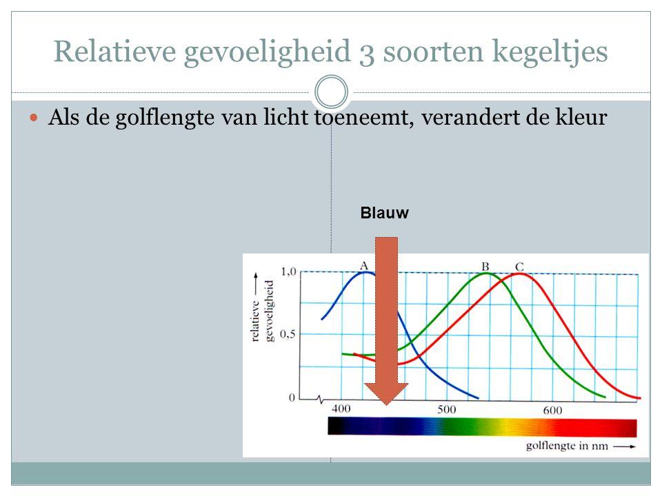 Relatieve gevoeligheid 3 soorten kegeltjes Als de golflengte van licht toeneemt, verandert de kleur Blauw