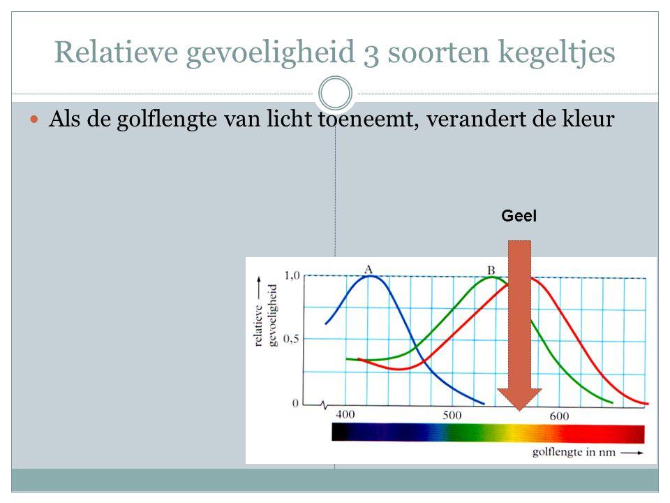 Relatieve gevoeligheid 3 soorten kegeltjes Als de golflengte van licht toeneemt, verandert de kleur Geel