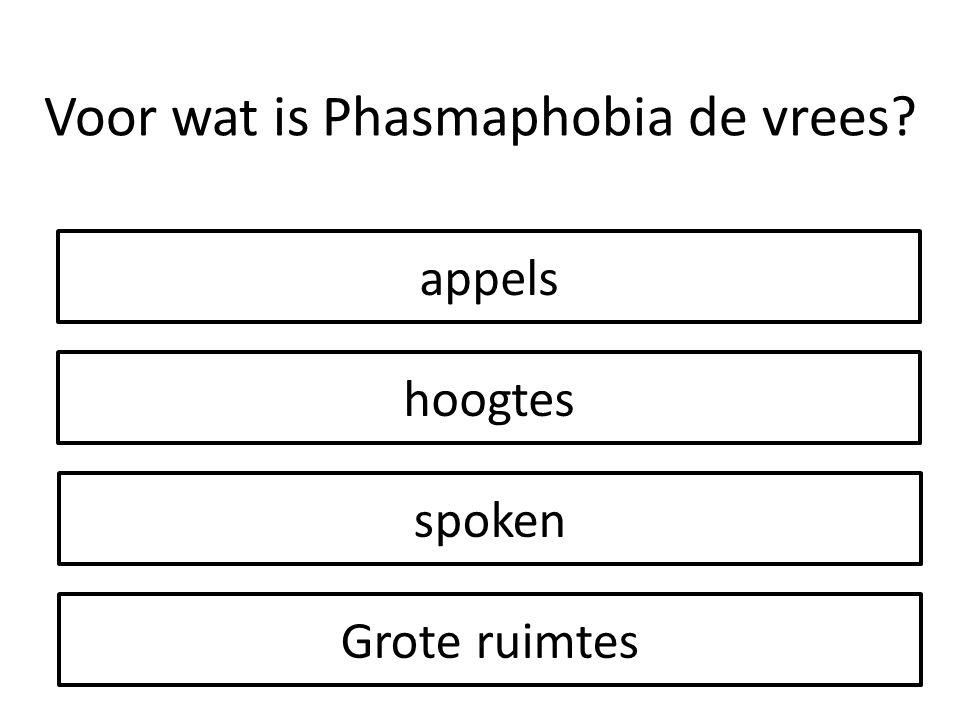 appels hoogtes Grote ruimtes spoken Voor wat is Phasmaphobia de vrees?