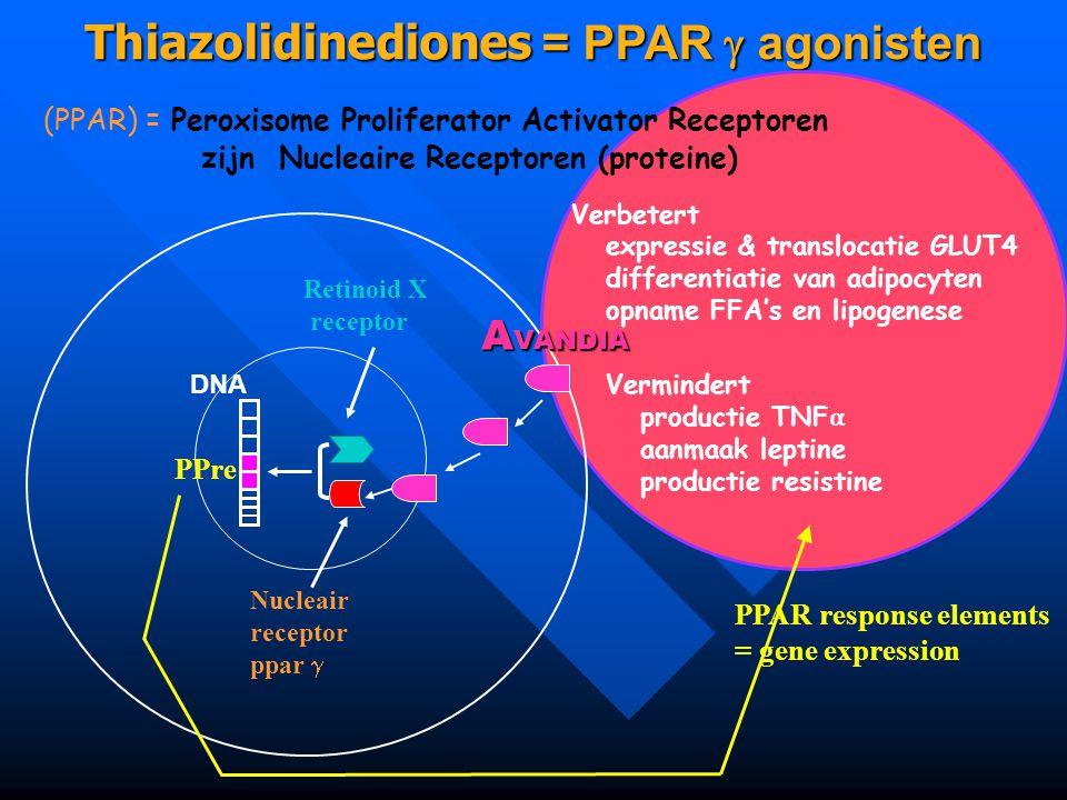 Thiazolidinediones = PPAR  agonisten (PPAR) = Peroxisome Proliferator Activator Receptoren zijn Nucleaire Receptoren (proteine) DNA Nucleair receptor