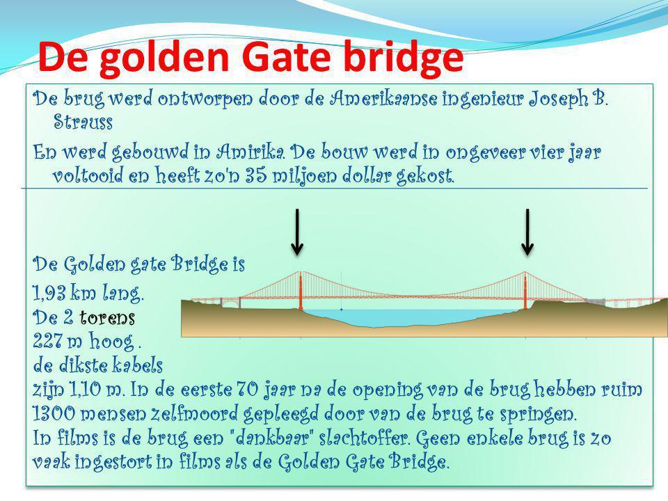 De brug werd ontworpen door de Amerikaanse ingenieur Joseph B.