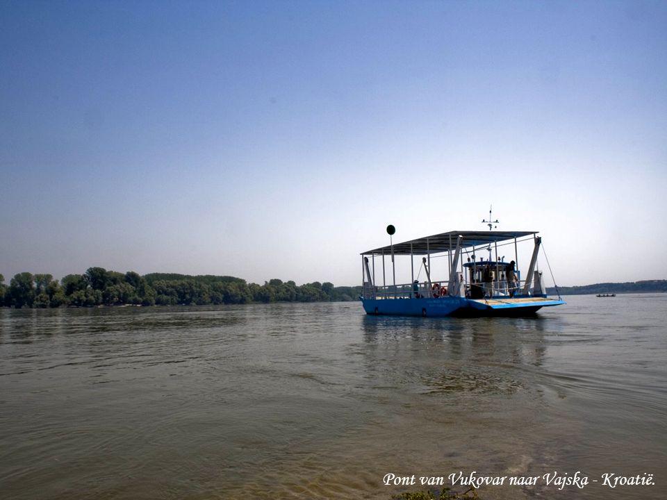De Donau bij Baja –Hongarije.