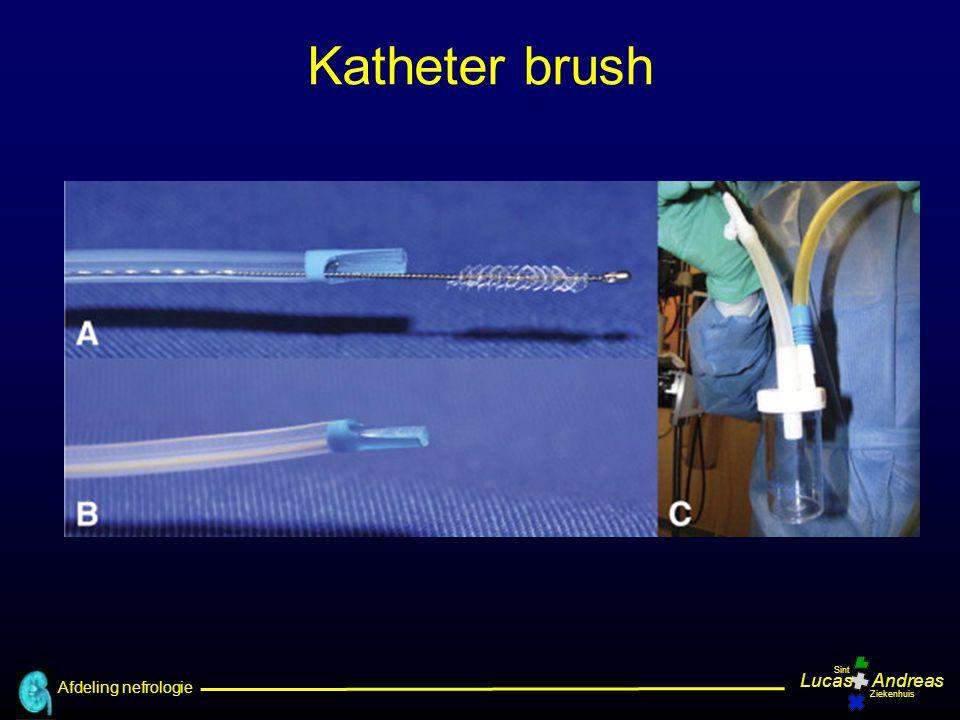 Afdeling nefrologie LucasAndreas Sint Ziekenhuis Katheter brush