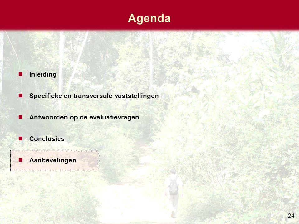24 Agenda Inleiding Specifieke en transversale vaststellingen Antwoorden op de evaluatievragen Conclusies Aanbevelingen