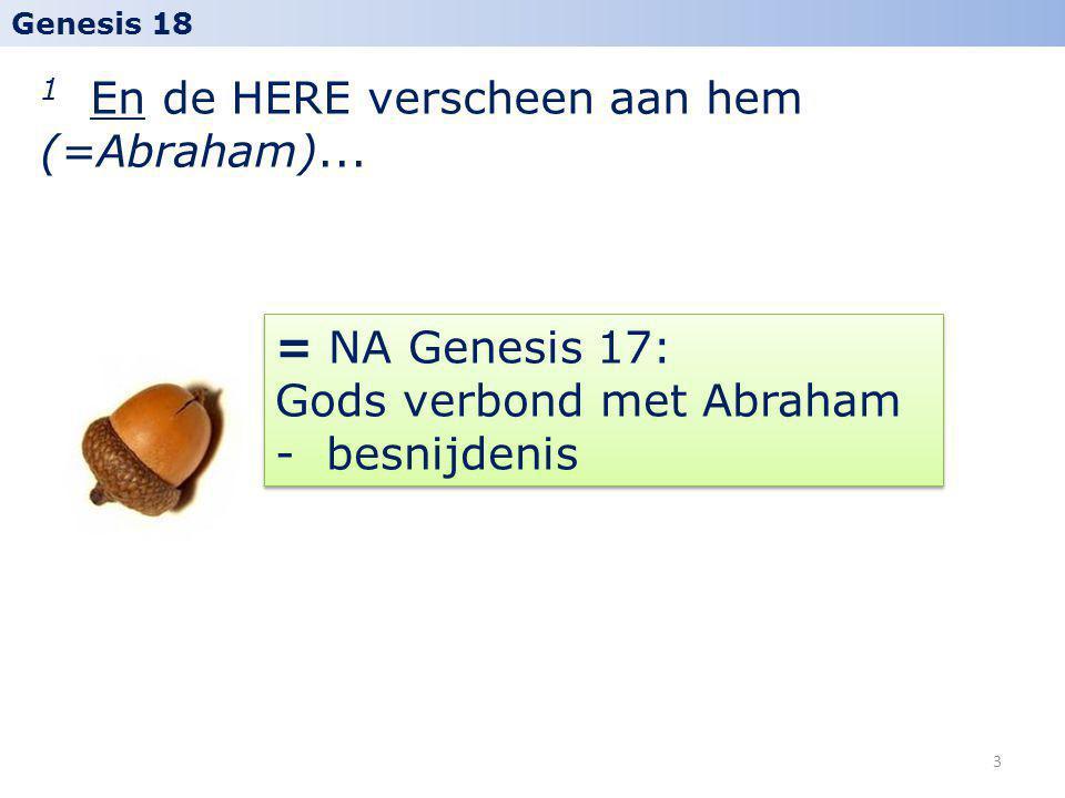 1 En de HERE verscheen aan hem (=Abraham)... Genesis 18 = NA Genesis 17: Gods verbond met Abraham - besnijdenis 3