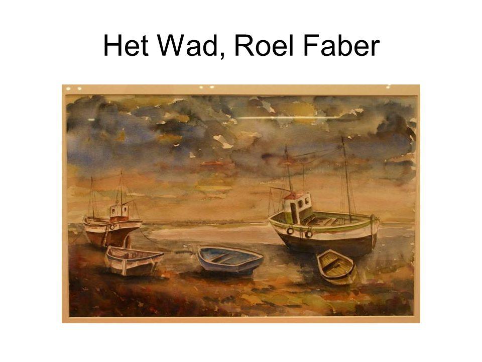 Het Wad, Roel Faber