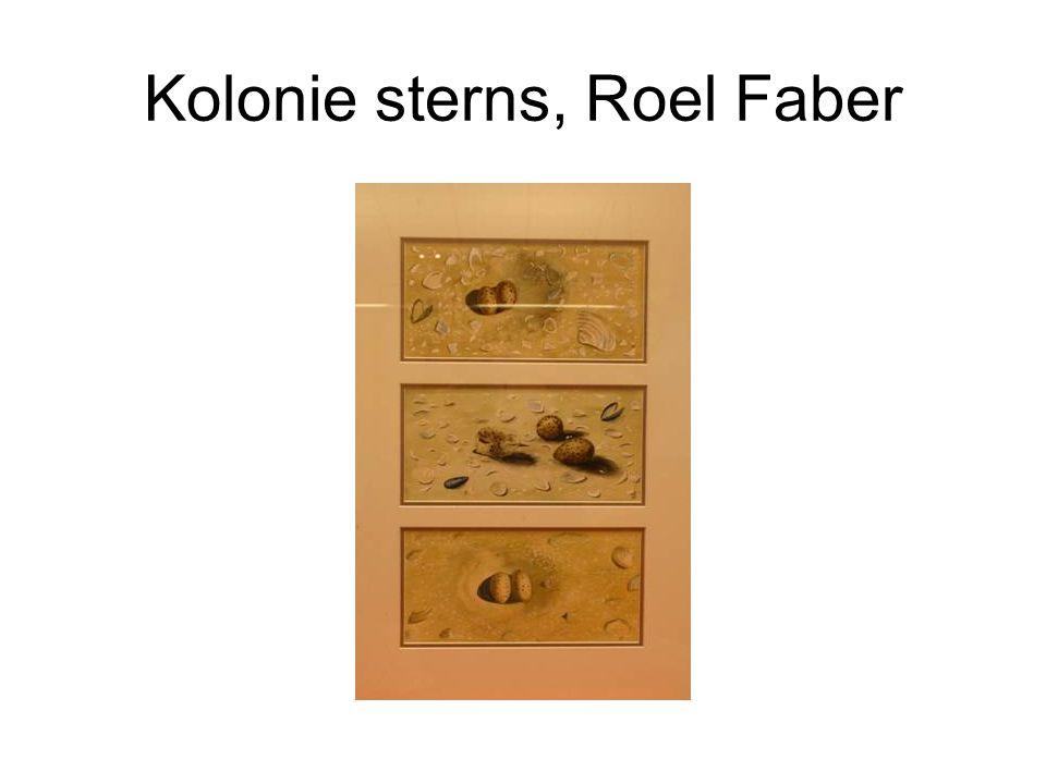 Kolonie sterns, Roel Faber