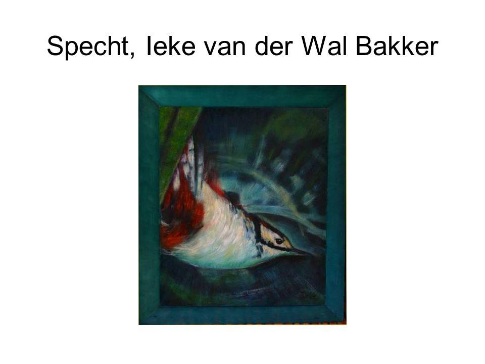Specht, Ieke van der Wal Bakker