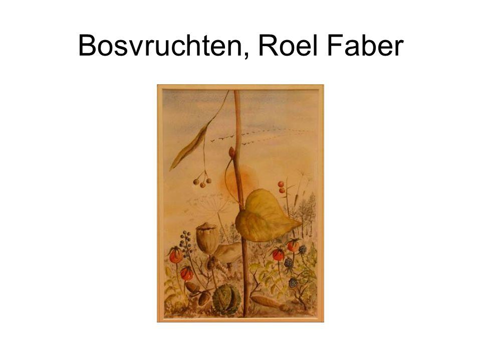Bosvruchten, Roel Faber