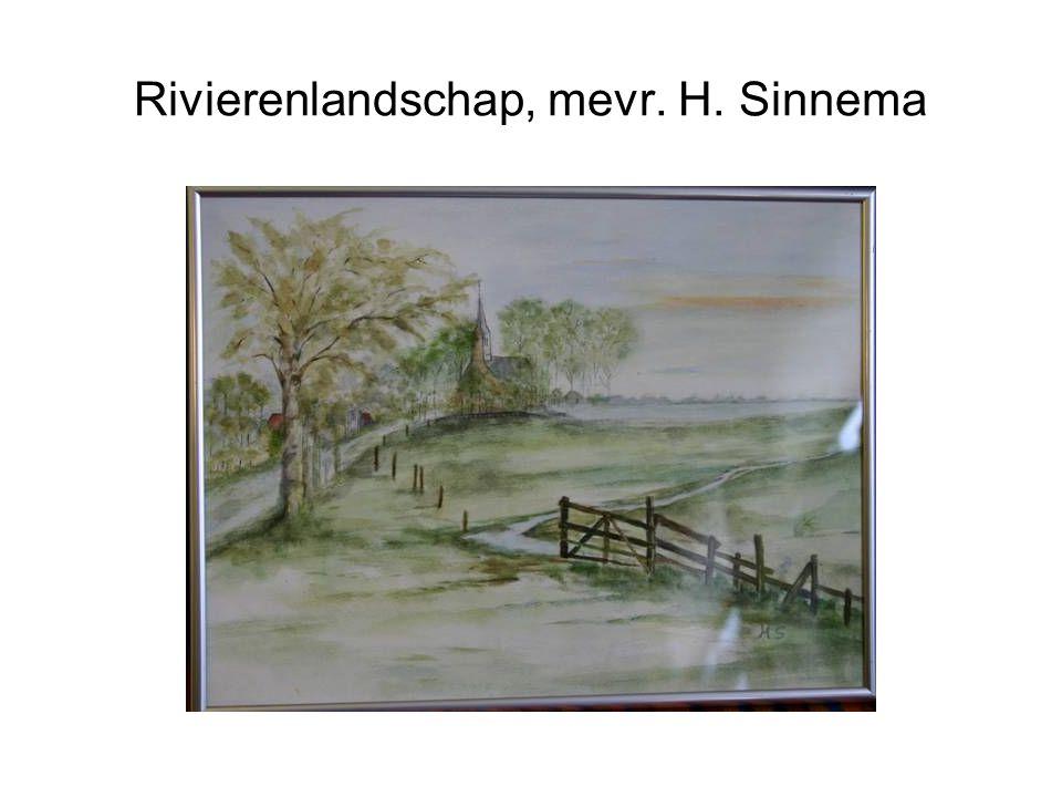 Rivierenlandschap, mevr. H. Sinnema