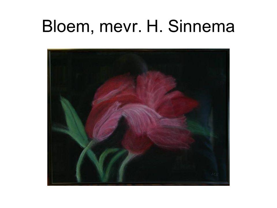 Bloem, mevr. H. Sinnema