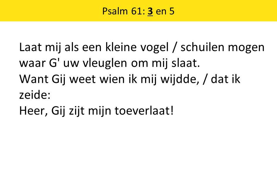 Psalm 61: 3 en 5 Laat mij als een kleine vogel / schuilen mogen waar G' uw vleuglen om mij slaat. Want Gij weet wien ik mij wijdde, / dat ik zeide: He