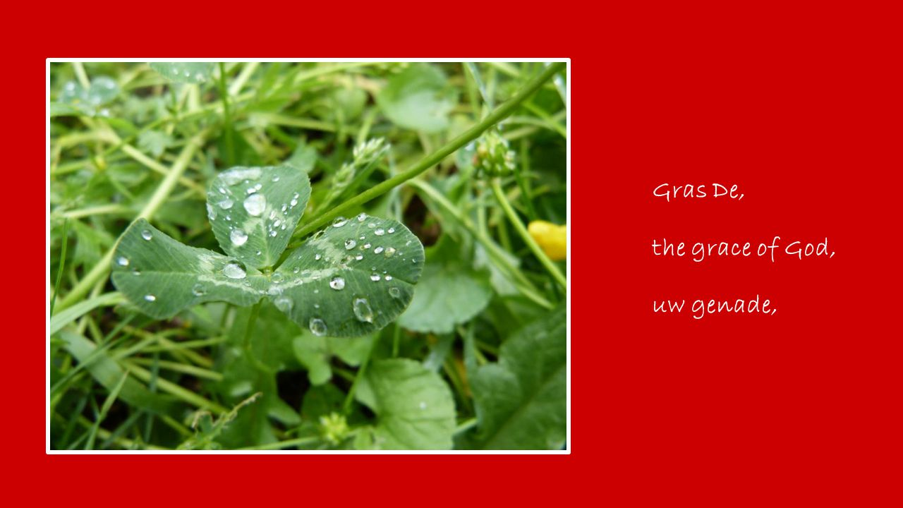 Gras De, the grace of God, uw genade,