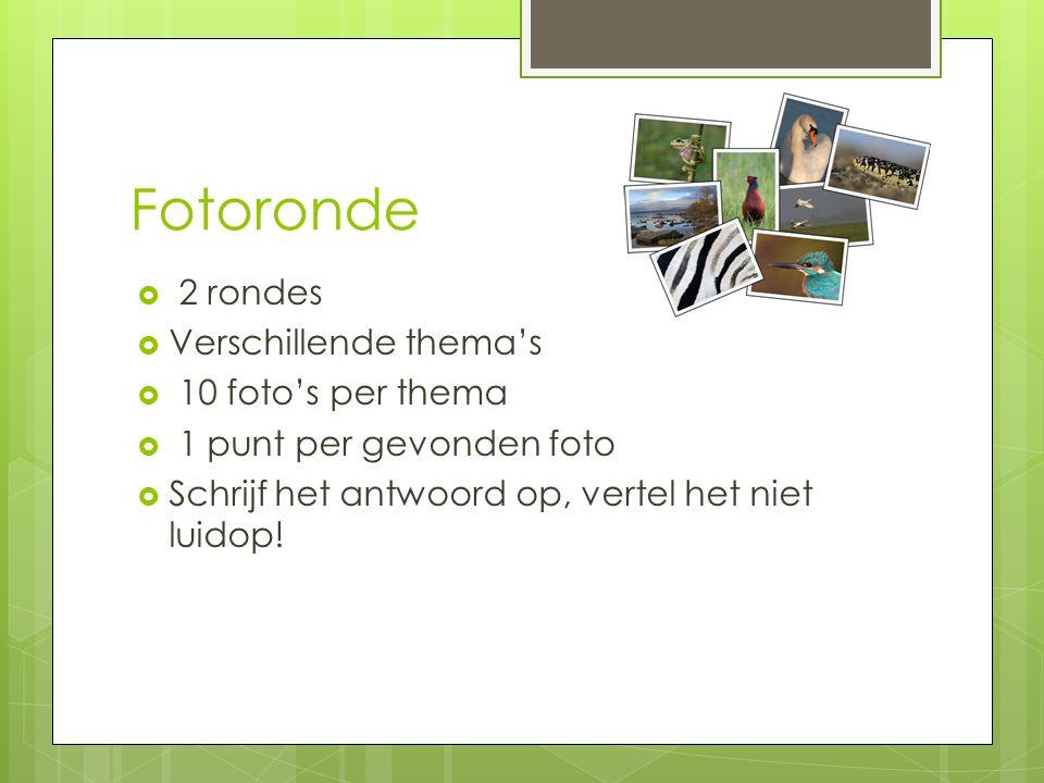 Fotoronde  2 rondes  Verschillende thema's  10 foto's per thema  1 punt per gevonden foto  Schrijf het antwoord op, vertel het niet luidop!
